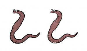 2worms2
