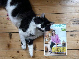 Henry the cat presents the latest issue of CIO Connect magazine