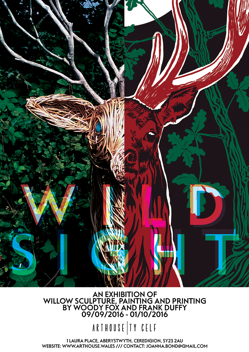 poster for art house exhibition wild sight